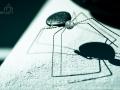 pavouk Swarovski - Fira (Thira)