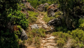 Trasa začíná nad osamělým domkem na konci šotolinové cesty, chvíli vede podél oploceného olivovníkového sadu a pak už vaše kroky bude měřit pouze kamenná stezka vinoucí se mezi  balvany