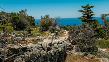 Kleče, jedle a borovice, na obzoru Big blue, to vše pěkně v linku kamenných zídek