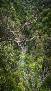Mezi větvemi stromů se nám opět zjeví tyrkysový Acheron