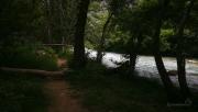 pokračujeme temným lesem směrem Glyki po jižním břehu řeky