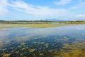 Amvrakikos je velký a složitý ekosystém, který obsahuje největší řecké bažiny, stejně jako několik velmi produktivních lagun