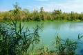 řeka Louros orámovaná nekonečnými pásy rákosí