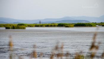 jedeme prašnou cestou kolem břehu směrem k Rodia wetlands