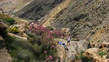 kaňon pod Aghios Ioannis nám hodně přípomíná loňský ostrov Ikaria...
