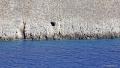 jeskyně je schovaná pár metrů nad mořem. Čeká vás hodně kamenitá cesta bez jakéhokoliv značení (zdroj: tripinview.com)