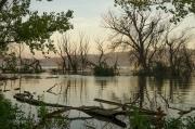 Dnes tu můžete přijít načerpat energii ke stromům u vody. Nejlépe ráno, kdy se všechno kolem probouzí a hladina jezera se zabarvuje prvními paprsky vycházejícího slunce.