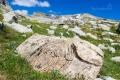 Stezka nás provádí kolem velice zvláštních kamenů, ve kterých jsou zcela viditelně vyryty letokruhy! Že by pozůstatky prastarého lesa, který příroda za tisíce let přeměnila v kámen?