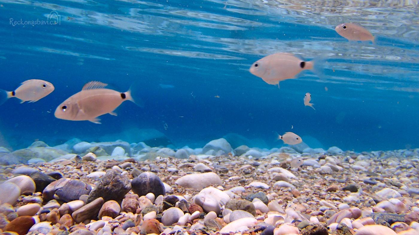 křišťálová voda jako v akváriu...