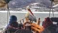 Lodní výlety si tu můžete dopřát i v zimě, kdy jsou pelikáni hladoví a Vassilis je láká na příď své lodi chutnými rybami. Pelikán si tak někdy sedne přímo mezi posádku :)