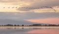 Jezero Kerkini se probouzí