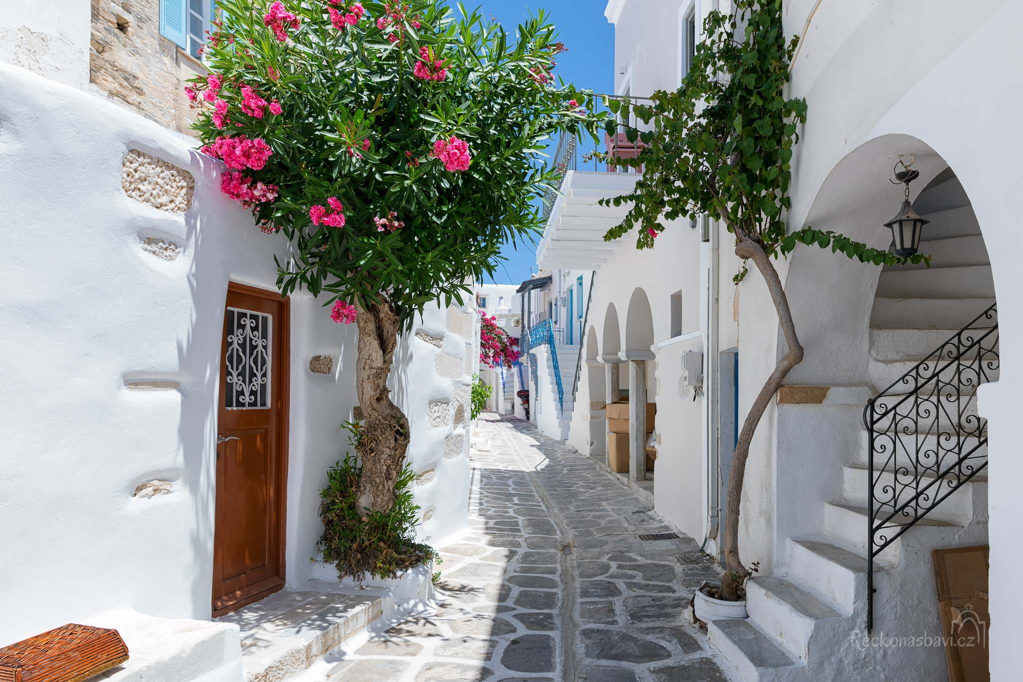 Oleandrové zátiší v Parikia na ostrově Paros
