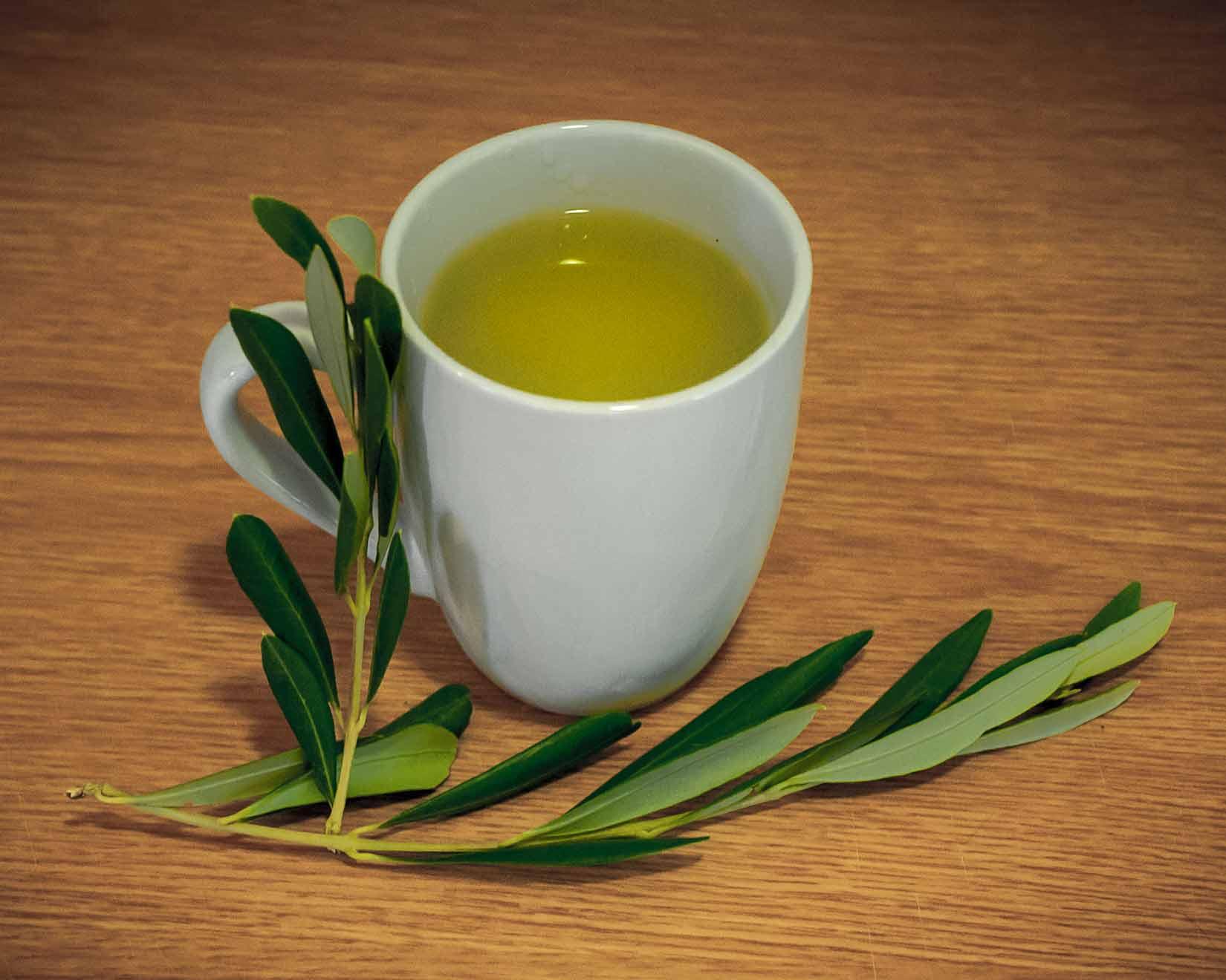 Čaj z čerstvých olivových listů má zlatavou barvu a jemnou chuť a vůni