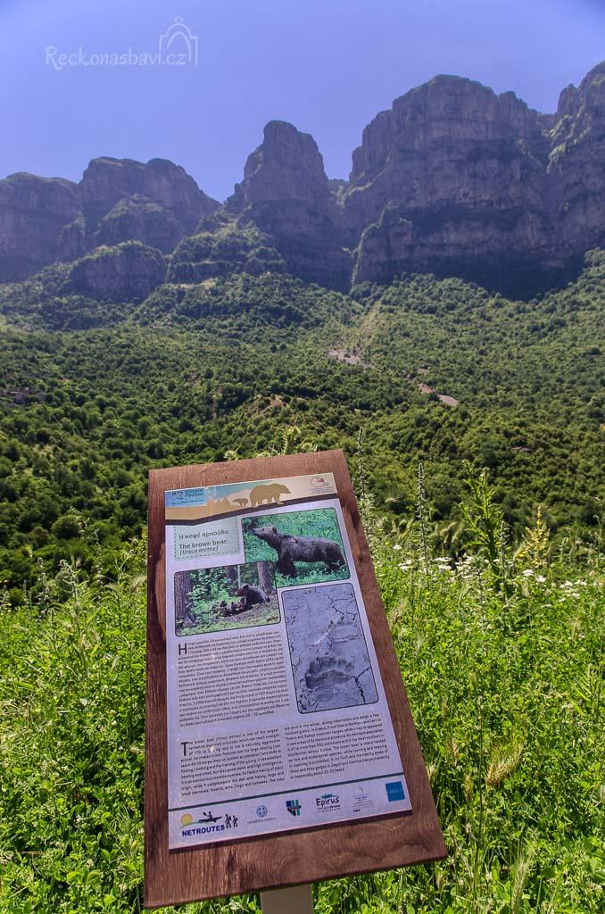 """U informační cedule """"medvěd hnědý"""" se dozvídáme, že v Zagori žije 20 až 30 hnědých chlupáčů. Nejvíc kolem kaňonů Vikos a Aoos, města Konitsa a přilehlého okolí."""