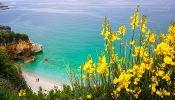 9-17-Mylopotamos-beach-Pelion