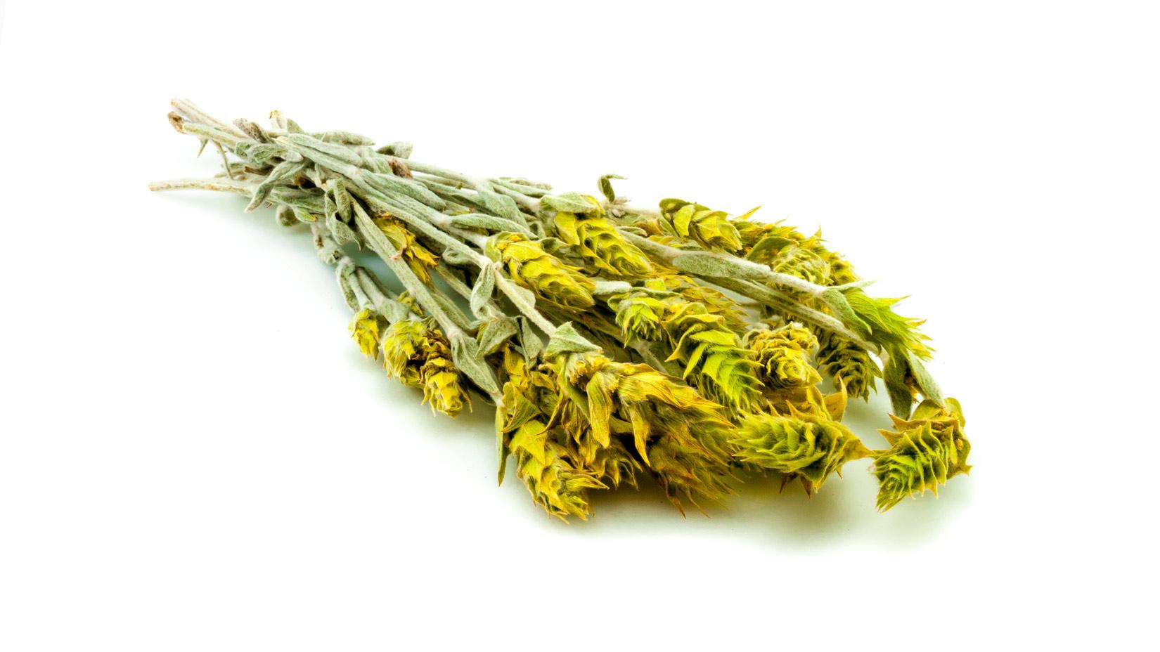 Řecký horský čaj usušený vcelku lahodí oku lépe než nalámané kousky - no uznejte