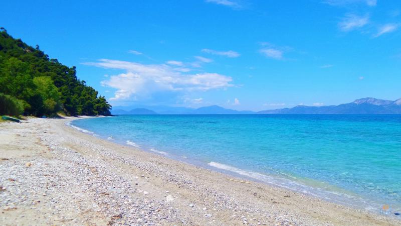 Koutsoupri-beach-3