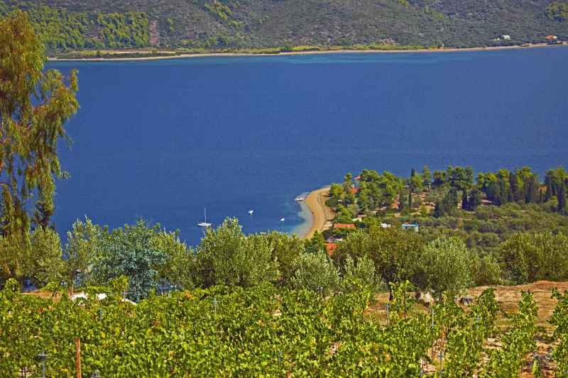 Pohled z Wriniotis winery k pláži Mylos