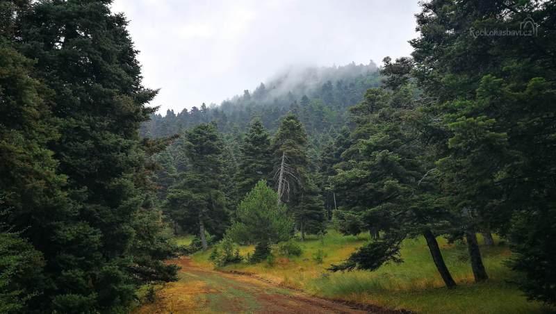 Na Evii nalezneme husté borovicové lesy, hluboké rokle s říčkami a vodopády, nádherné kláštery, bohaté vinice i divoké pláže