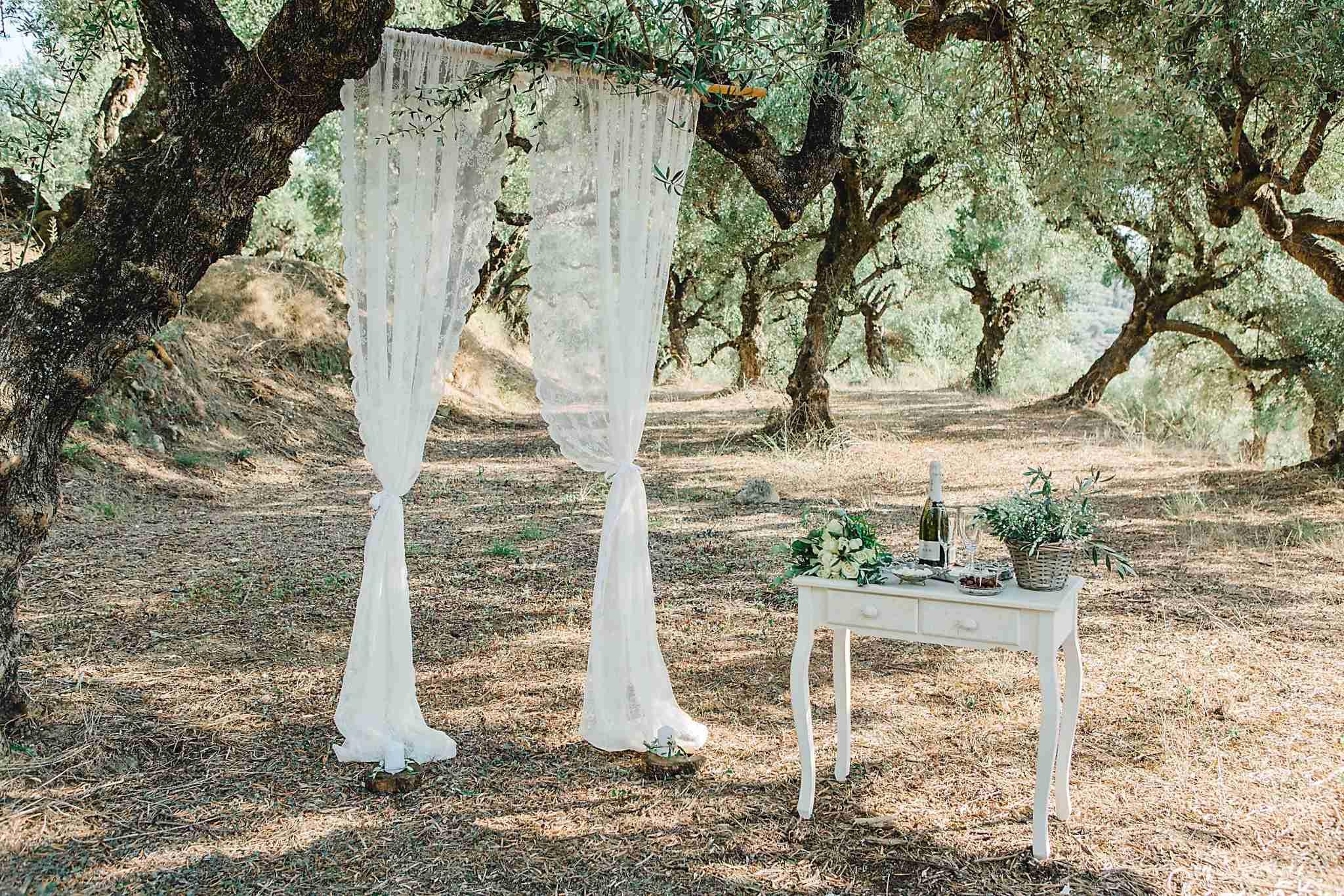 Svatba v Řecku už je sama o sobě netradiční, svatba v olivovém háji je ale teprve něco neobvyklého!