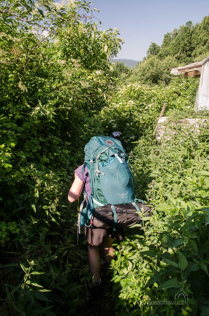 V 10 hodin zavíráme vrátka za vesnicí a prodíráme se kopřivami do lesíku ...