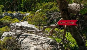To jsou ony, takové a podobně červené značky Tě budou doprovázet touto, i jinými stezkami ostrova Ikaria