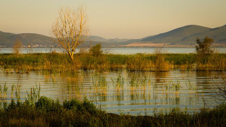 Doirani, Kavallaris, To Patriko, Dojranské jezero, Belasica